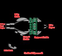 200px-Voskhod_spacecraft_diagram